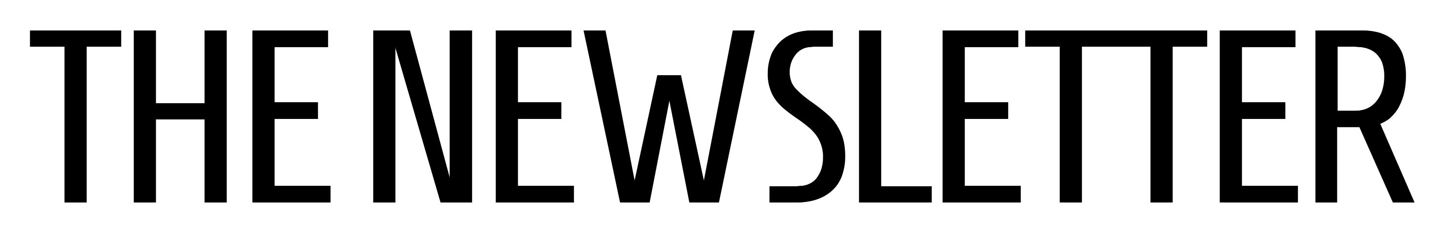 Logo TheNewsletter.biz